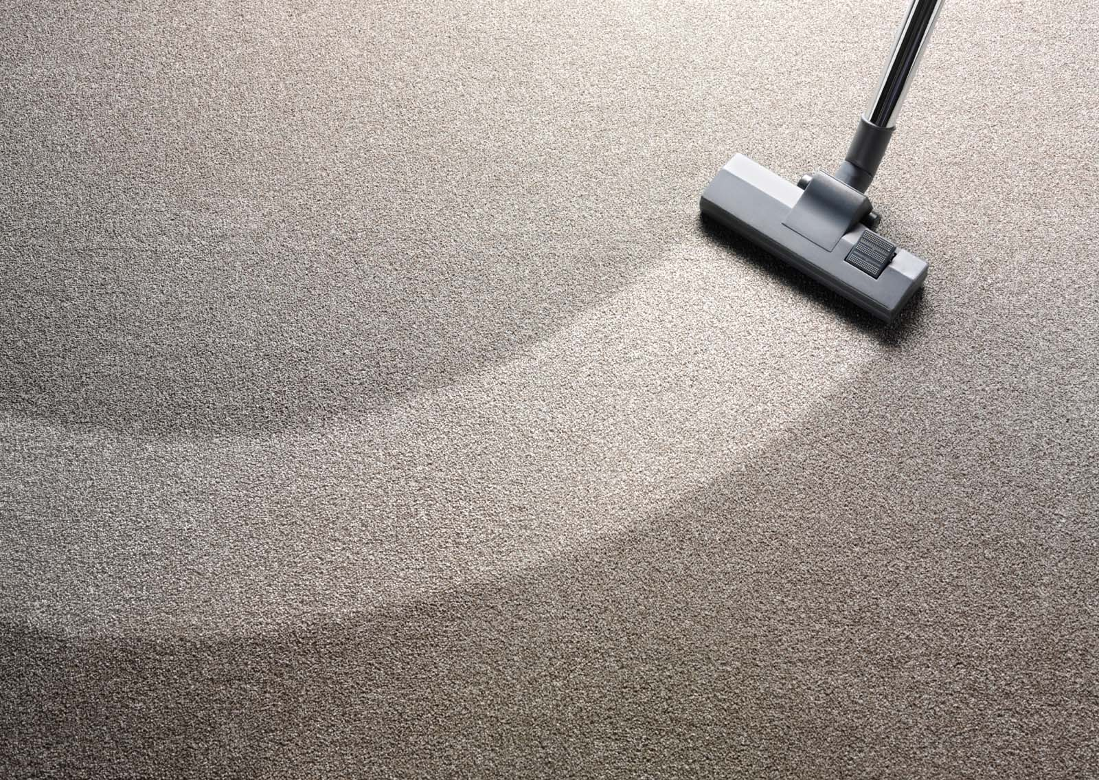 Carpet cleaner in Warrane