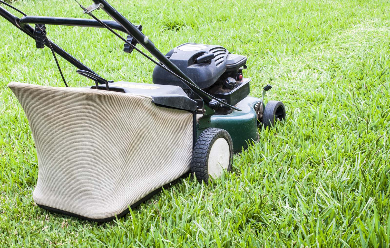 Find A Reliable Lawn Mower Anywhere In Australia
